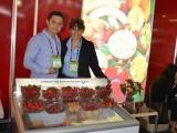 alimentos_industriales_sac-fresas_17-jpg