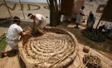 cesteria en junco y totora