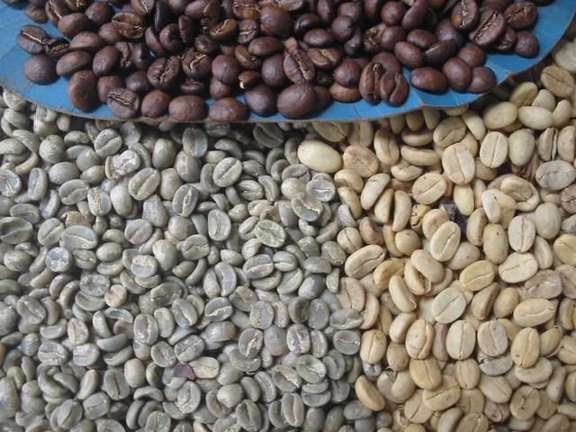 Cafe Amazonas 3