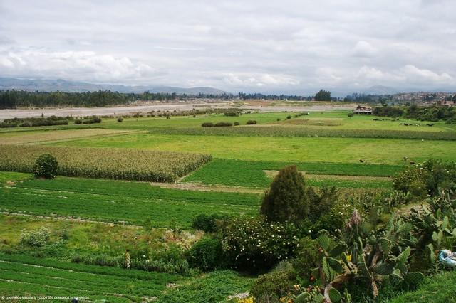 Valle Mantaro 1