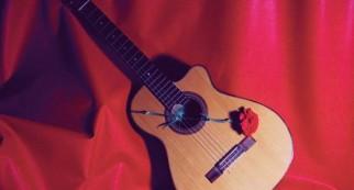 Guitarra y Rosa