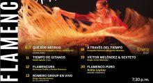 afiche-flamenco-2017-final