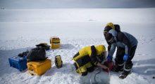 vida-bajo-el-hielo-en-la-antartida
